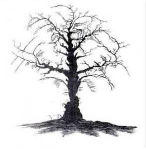 Riesci a vedere 10 facce nell'albero?