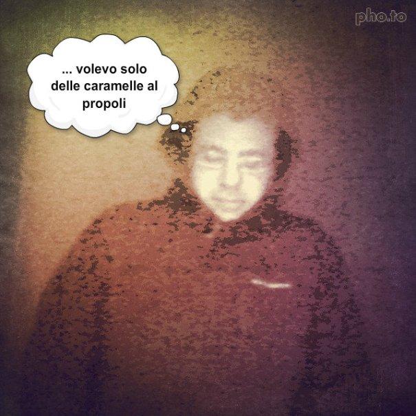 il_rapinatore_di_propoli