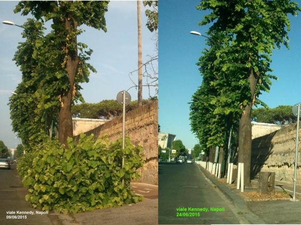viale Kennedy prima e dopo il nostro post denuncia