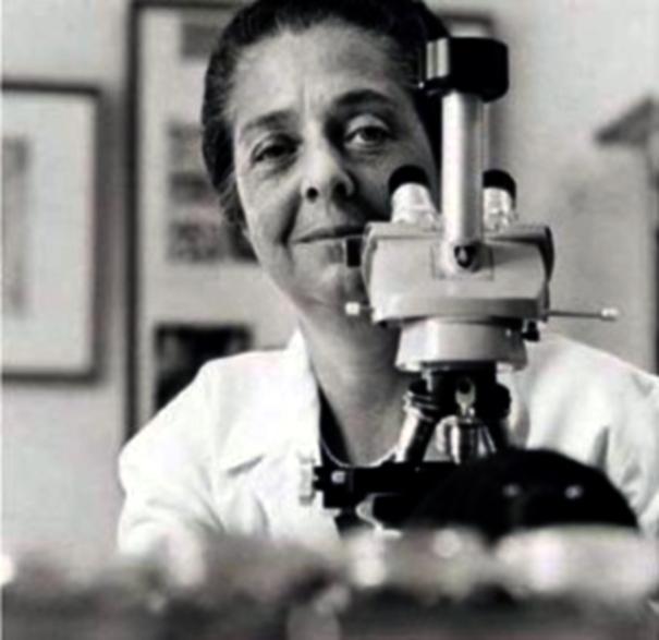 Rita Levi di Montalcini